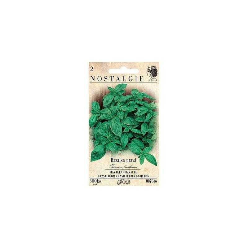 Bazalka pravá, 300 semen