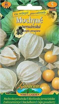 Mochyně peruánská, žlutá