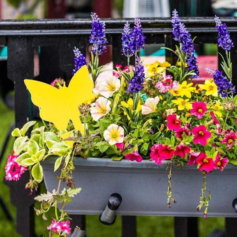 Ochrana rostlin před hmyzem