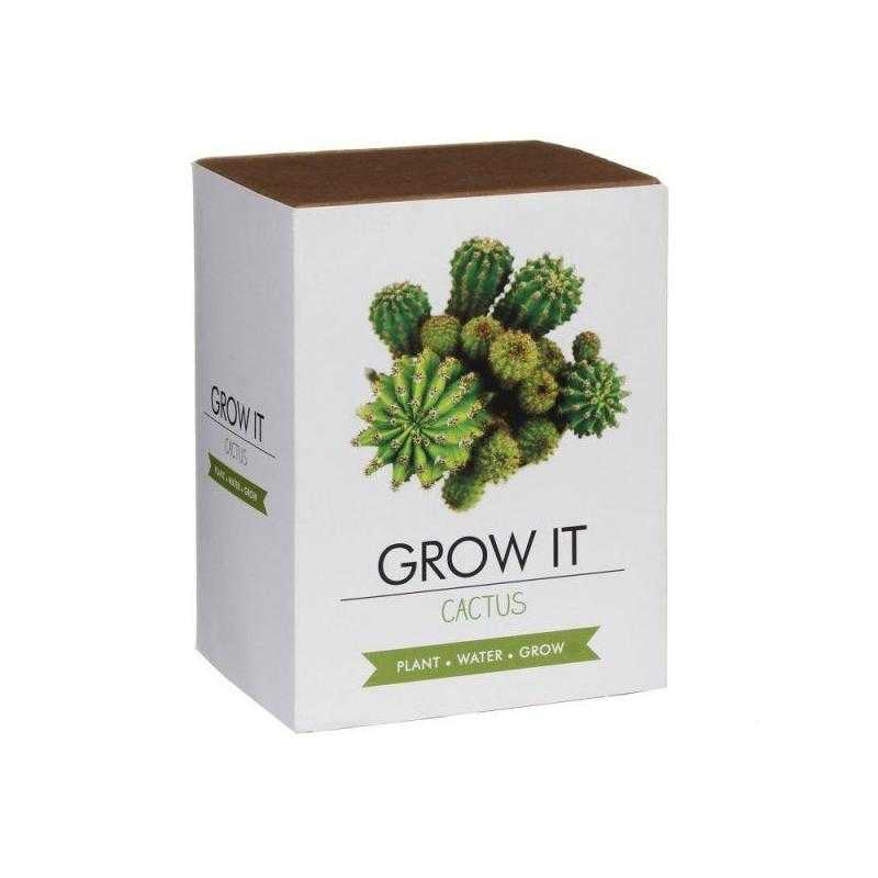 Grow it - Kaktus