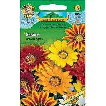 Gazánie zářivá, směs, 30 semen
