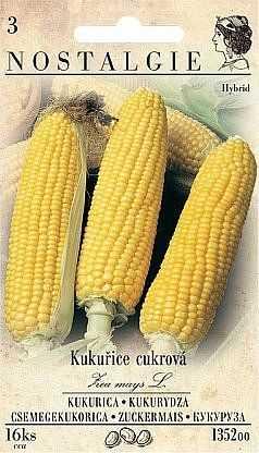Kukuřice cukrová, 16 semen