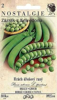 Hrách dřeňový raný, 80 semen