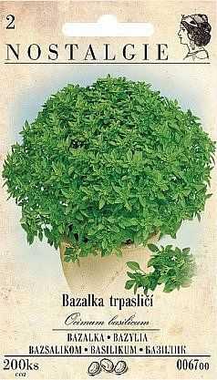 Bazalka trpasličí, 200 semen