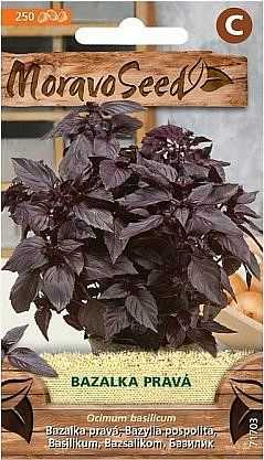 Bazalka pravá, červená 71703, 250 semen