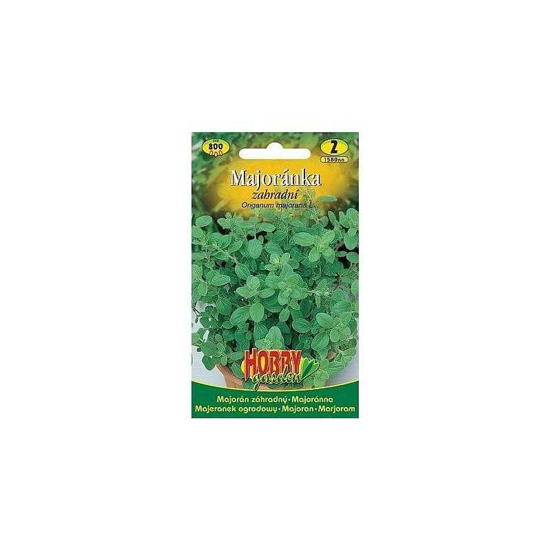 Majoránka, 800 semen