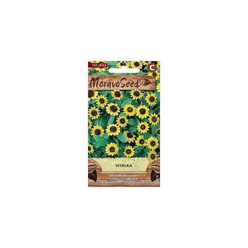 Vitálka položená, žlutá 03410, 150 semen