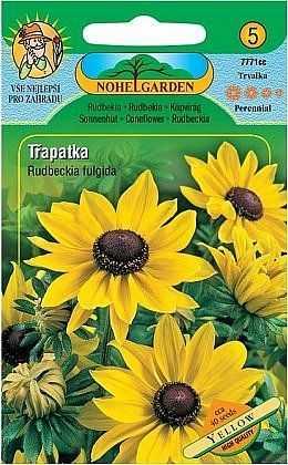 Třapatka srstnatá vytrvalá, žlutá, 40 semen