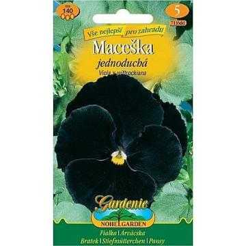 Maceška zahradní jednoduchá, černá bez oka, 140 semen