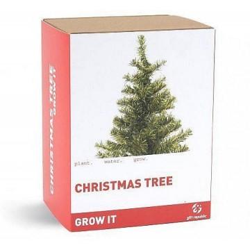 LIKVIDACE! Grow it - Vypěstuj si vlastní Vánoční smrček