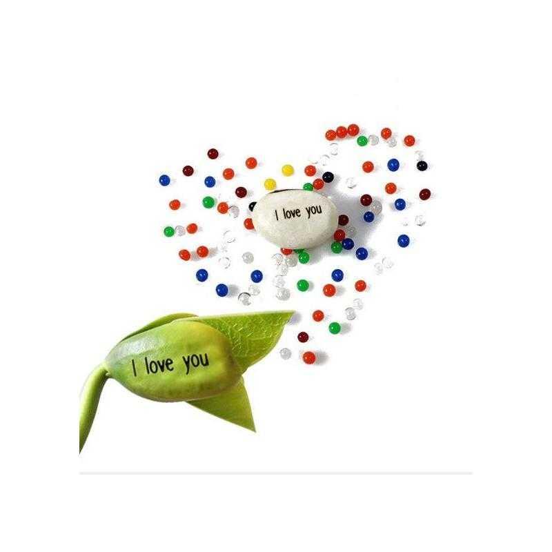 Kouzelná fazolka s nápisem
