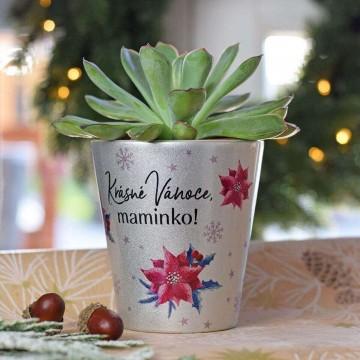 HOUSEDECOR Vánoční květináč pro maminku