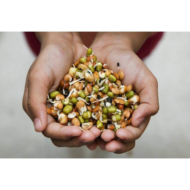 JEMNÁ SMĚS - semínka na klíčení 20g