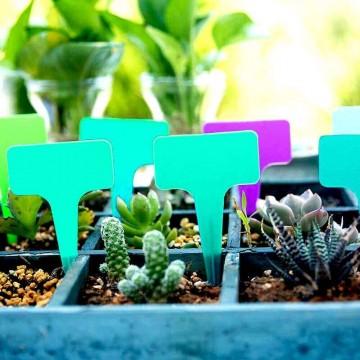 Štítky k rostlinám - zelená