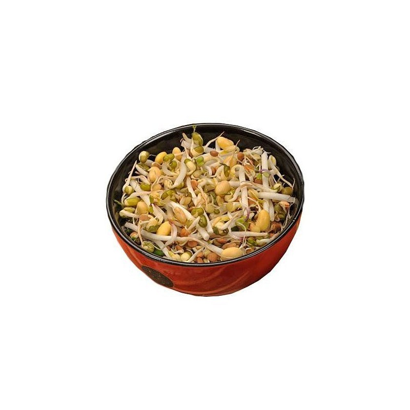 ČÍNSKÁ SMĚS - semínka na klíčení 40g