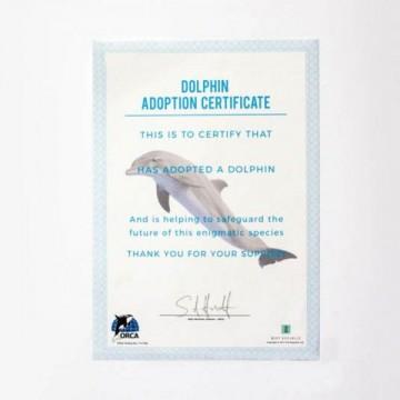 Adoptuj delfína