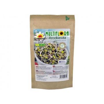 ŘEDKVIČKA RED PURPLE – semínka na klíčení 100g