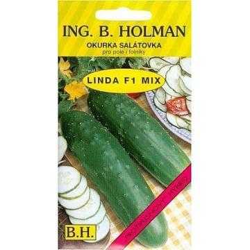 Okurka salátová na pole LINDA F1 - hybrid