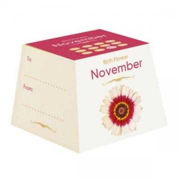 Květina zrození - listopad
