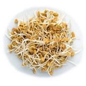 PÍSKAVICE - semínka na klíčení 20g  Klíčky pískavice jsou nezbytným potravinovým doplňkem, obsahují vitamíny A, D, B1, B2. Dále obsahuje kyselinu pantotenovou, niacin, minerály a stopové prvky jako draslík, hořčík, vápník, fosfor, síra a železo. Doplňují stravu o bílkoviny a rostlinné tuky, a navíc se lehce se tráví a hodí se na chleba, saláty a vše co vás jen napadne.  #vyklictcz #klicky #microgreen #microgreens #domacifarma #farma #vyklicenocz #kliceni #pestovani #gastro #vegan #flowers #cervenezeli #zeli #cocka #seminka #seminkacocky #veganfood #zakladni #zakladnismes #jemnasmes #jemna #nepikantni #sklizeno #redkvicka #redpurple #bylinky #microbylinky